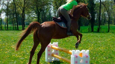 Barre d'équitation gonflable Educso